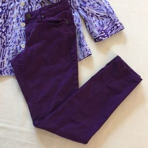 Cache Purple Stretchy Jeans
